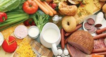 Gıda Sektörü